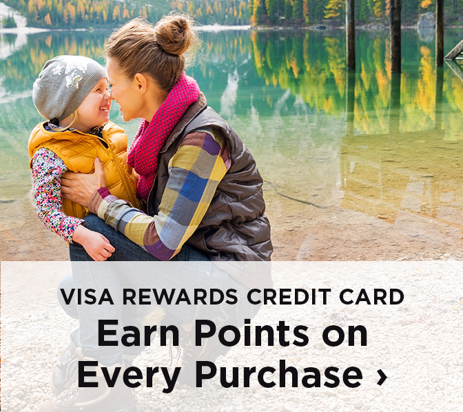VISA Rewards Credit CArd Earn Points on Every Purchase
